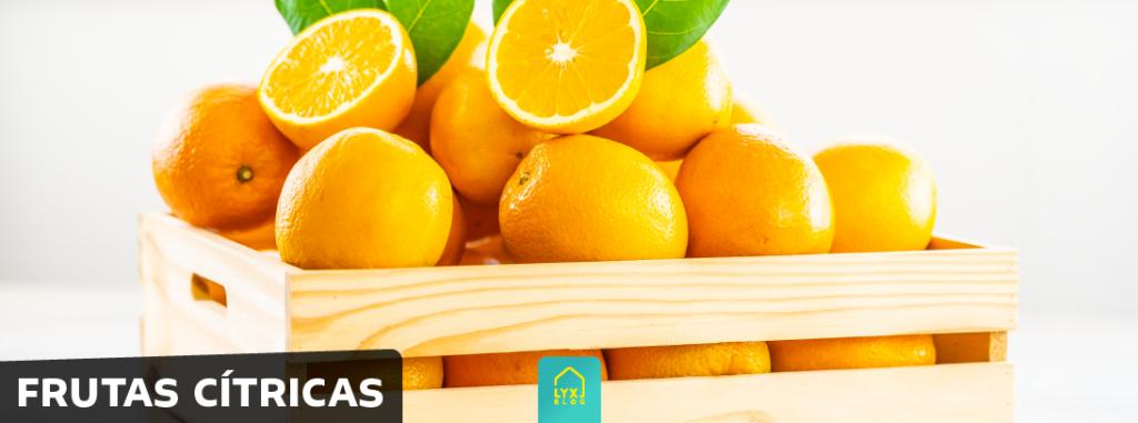 alimentação saudável frutas crítricas